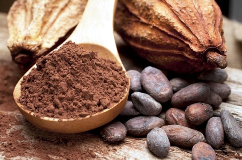 Чем полезен какао порошок для организма человека